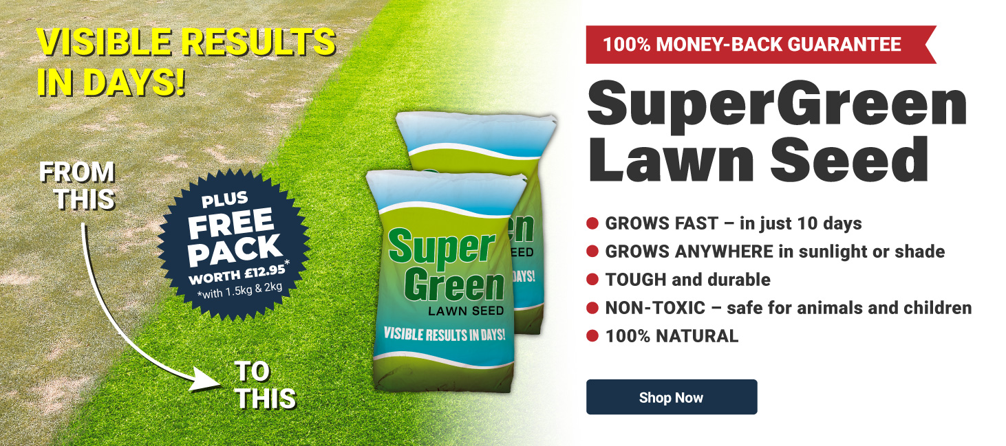 SuperGreen Lawn Seed Get Up 500g Free